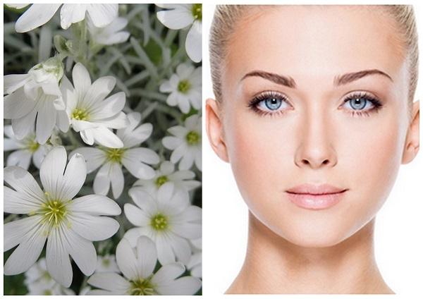 Kwiaty i twarz kobiety; henna Łódź Bałuty