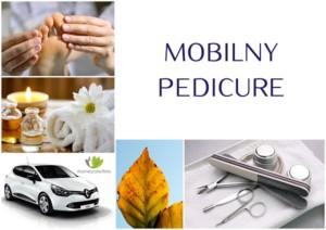mobilny-pedicure-ewa-wasiak-kosmetyczka-lodz-baluty